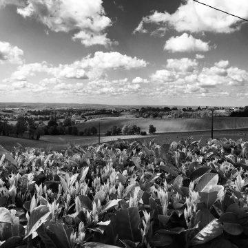 Weekend en Bretagne
